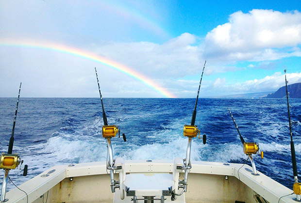 maui sport fishing start me up sportfishing lahaina