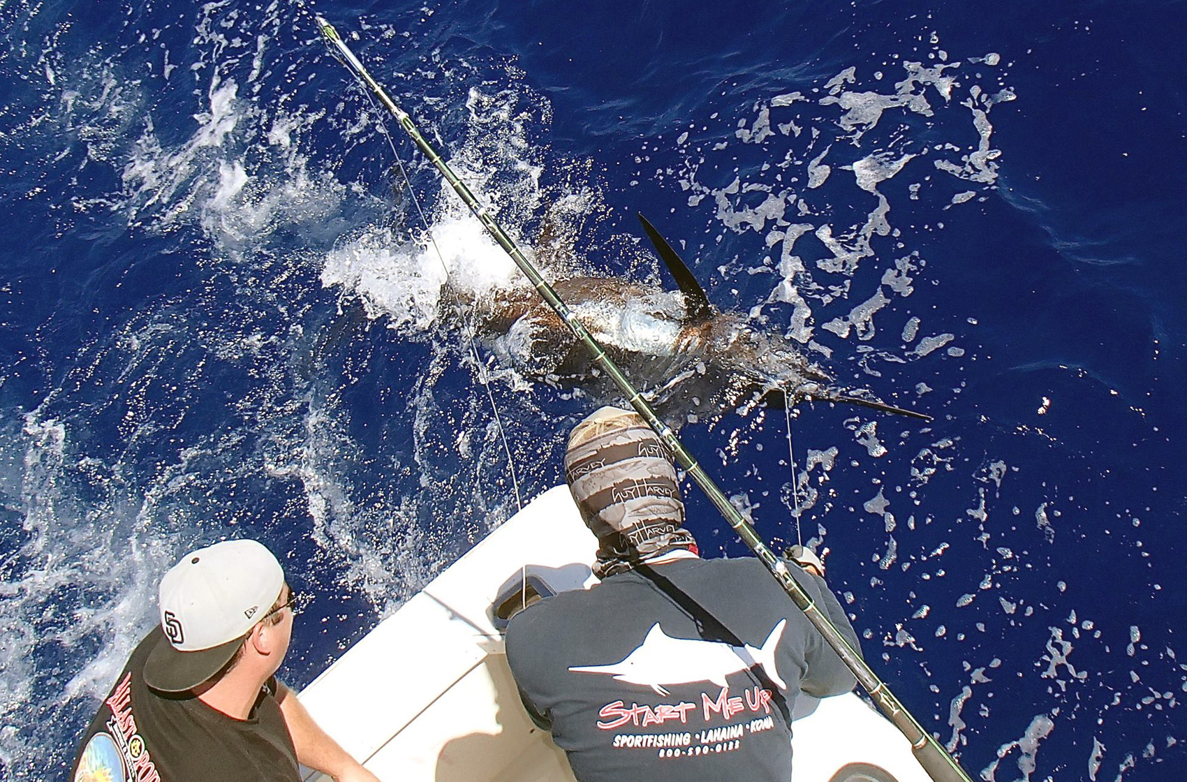 Maui Sport Fishing Catch Marlin